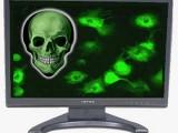 Picture: Опасен компютърен вирус ни рекетира за 200 $