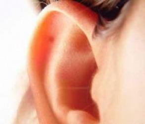 Рязане на уши в Брезник