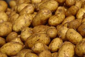 Картофи с рак