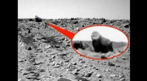 Каменна горила на Марс
