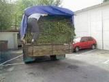 Picture: Задържаха шофьор на камион с 3,5 тона канабис