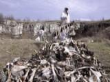 Picture: Откриха пирамида от кости до река в Земенско