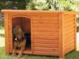 Picture: Откриха наркотици за 100 бона скрити в кучешка колиба