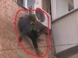 Picture: Късмет: Баба увисна на климатик секунди преди да се размаже на земята (ВИДЕО)