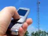 Picture: Няма невъзможни неща! SMS прави от GSM-а бръмбар