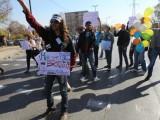 Picture: Студенти от НБУ блокираха Околовръстното