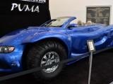 Youabian Puma