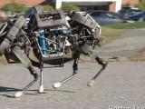 Picture: Гугъл купи фирмата за роботи