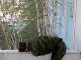 Picture: Пиян войник унищожи 2 БТР-а, за да си купи цигари