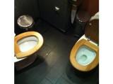 Picture: СНИМКИ на тоалетни станаха хит в интернет!