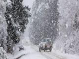 Picture: Ще има ли сняг тази зима? Времето ни готви нова изненада!