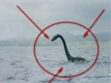 Picture: Чудовището от Лох Нес го сполетя трагедия?!
