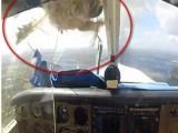 Picture: Нетипично! Птица разби стъклото на малък самолет (ВИДЕО)