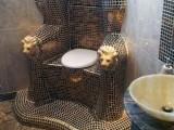 Picture: Президентът на Украйна Виктор Янукович използвал златна тоалетна!