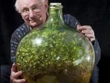 Picture: Уникално! Градина в буркан не е поливана 42 години