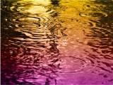 Цветни валежи от сахарски пясък