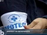Picture: Протест на ветеринарните лекари