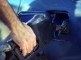 Кражбата на нафта в Германия с рекордни нива