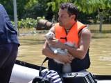500 доброволци пристигнаха в Мизия
