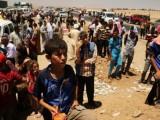 Picture: Избягалите в планината Синджар иракчани бедстват