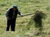 Фермерите да подават искове за компенсации бързо