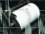 Земетресение разклати Перник