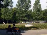 Picture: Слагат бариери в Борисовата градина