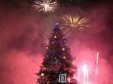 Коледната елха на София