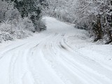 Picture: Пътищата на Витоша са опесъчени