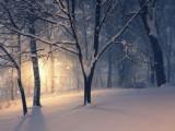 Picture: Студ до минус 15 градуса в Новогодишната нощ