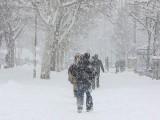 Picture: Зимата в България идва с пълна сила до часове