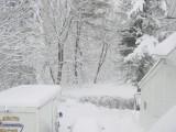 Picture: Пускат телефон за Спешна помощ заради лютата зима