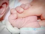 Столичната община ще подпомага семейства с репродуктивни проблеми