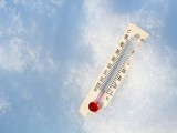 Рекордни студове в Румъния