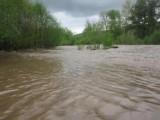 Picture: Наблюдават денонощно реките и водните басейни в София