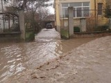 Picture: Смолян и Добрич бедстват