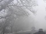Движението по пътищата в страната е затруднено от снега