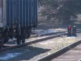 Picture: Полицията разби банда, обирала международни влакове край Драгоман