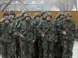 Какви са предизвикателствата пред въоръжените сили на България в този момент?