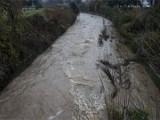 Нивата на реките са критично високи