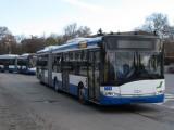 Picture: 100 нови автобуса тръгват в софийския градски транспорт