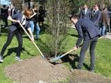 Ученици засадиха дръвчета в памет на загинали немски връстници
