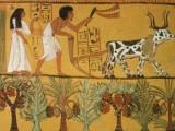 Picture: Бирата била на особена почит в Древен Египет