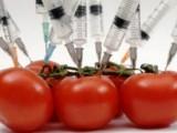 Picture: Европейският съюз одобри вноса и търговията с 19 стоки с ГМО