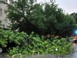 Опасна буря нанесе щети за милиони в Германия