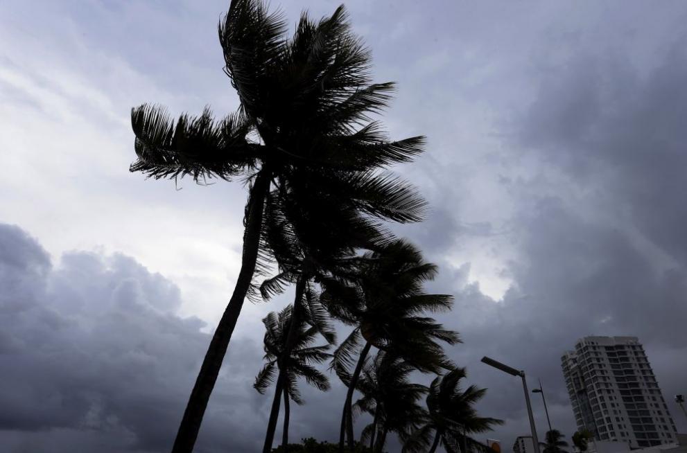 Irma bgnes