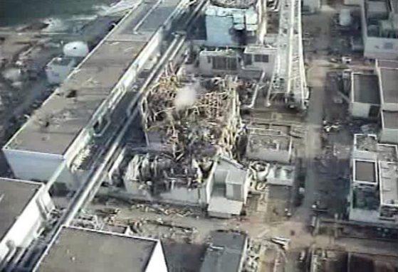 fukushima bgnes