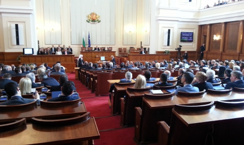 Plenarna zala bgnes