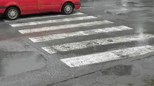 Zebra bgnes
