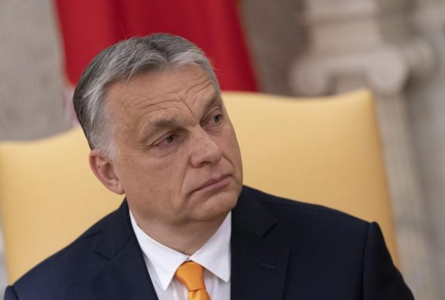 Orban bgnes